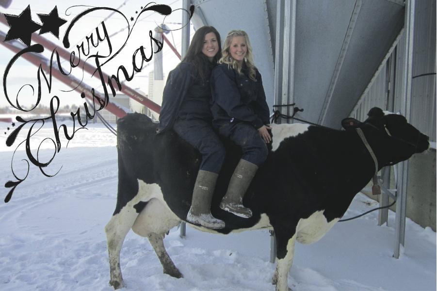 full_cow